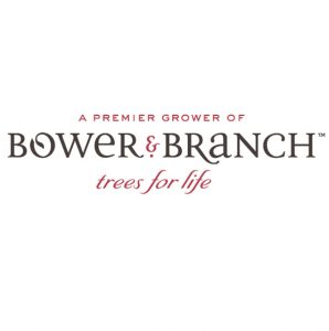 bower and branch logo